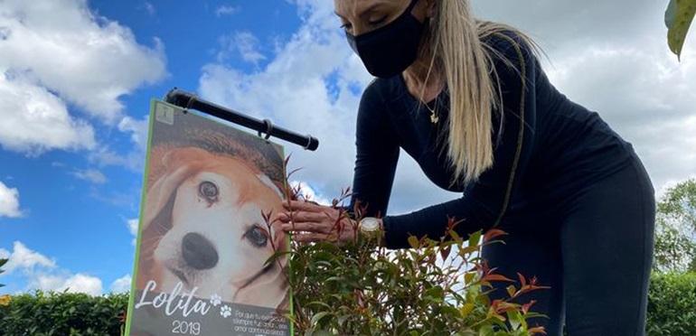 Polémica iniciativa: preparan abono orgánico con los restos de las mascotas fallecidas