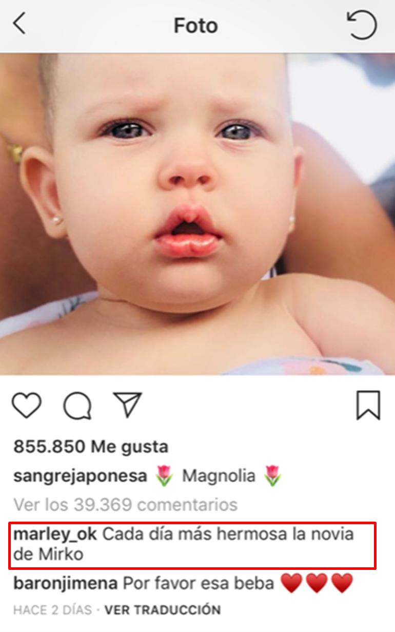 comentario Mirko magnolia